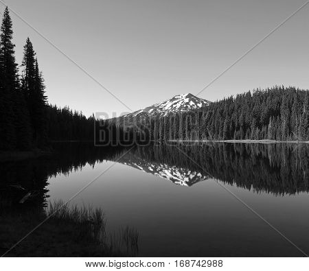 Mt. Bachelor in the Cascade Mountain Range in Central Oregon reflecting in Todd Lake in the morning summer Iight which also lights up the trees with a nice glow.