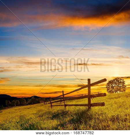 Wooden fence - a beautiful meadow blown Wildflowers at sunset