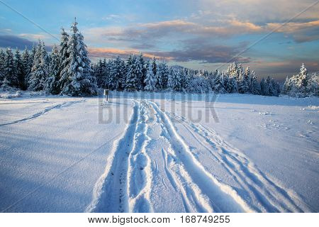 beautiful mountain landscape, the road stretches on snow-covered trees