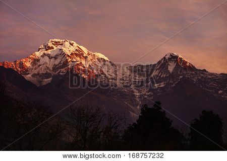 Gorgeous mountains of the Annapurna mountain range standing high in background with white craggy peaks lit with pink morning sunlight and covered with snow and ice. Famous alpine destination poster