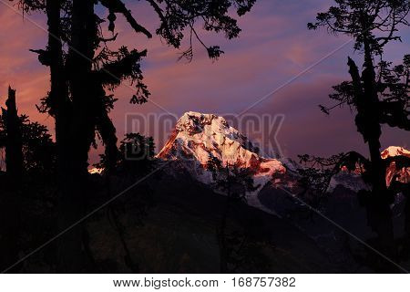 Beauty And Grandeur Of Wild Nature. Annapurna South, Nepal At Dusk. Amazing Pink Colored Evening Sky