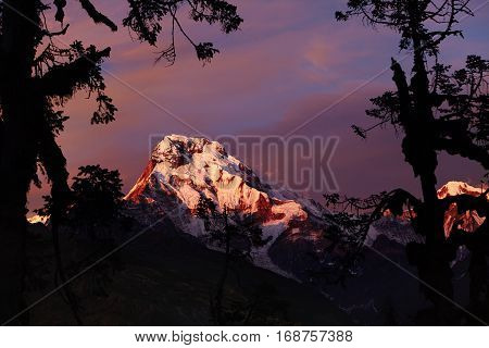 Beautiful Outdoor Shot Of Craggy White Peak Of Annapurna South Taken From Behind Trees. Gorgeous Mor