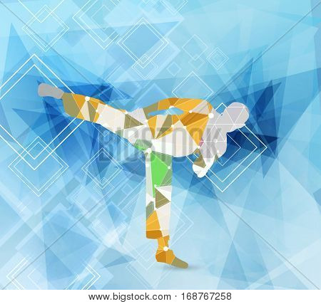 Karate fighter, vector illustration