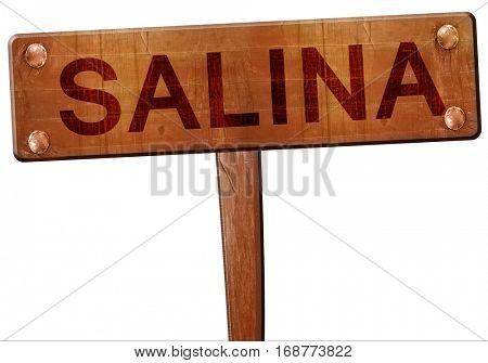 salina road sign, 3D rendering