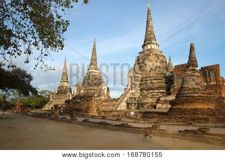 Three stupas of Buddhist temple Wat Phra Si Sanphet in the early morning. Ayuthaya, Thailand