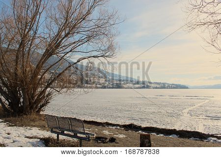 Picnic Table And Fire Pit On Shore Line Of Frozen Lake