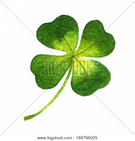 Four-leaf clover. Watercolor illustration on white background