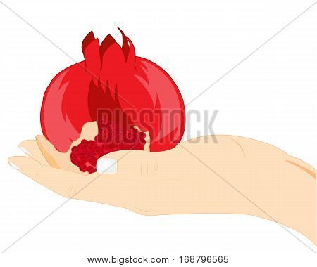 Ripe fruit garnet in stretched a hand of the person