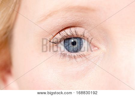 A blonde woman's right eye staring directly at camera