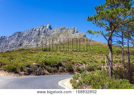 Road at the foot of Table Mountain in Cape Town