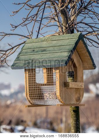 Wooden bird feeder with seed mix affixed to the tree