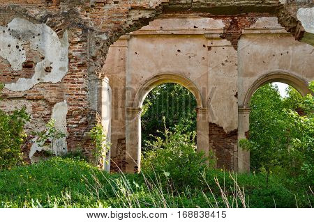 Remains of the walls of the ancient church in the forest undergrowth.