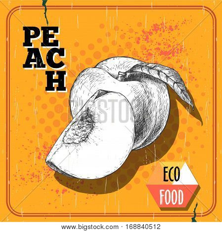 Hand drawn sketch style peach fruit. Vintage eco food vector poster. Ripe peach and peach quarter. Yellow halftone background.