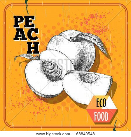 Hand drawn sketch style peach fruit. Vintage eco food vector poster. Ripe peach peach slices. Yellow halftone background.