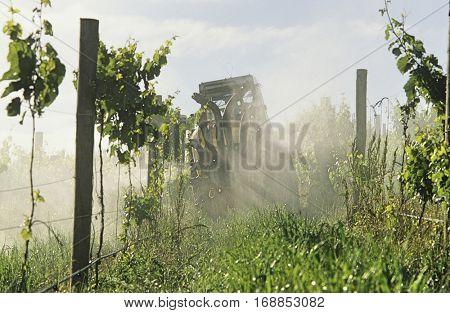 Tractor spraying vineyard with fungicide, Yarra Valley, Victoria, Australia.