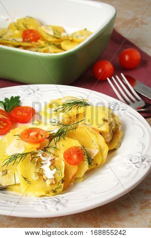 potato gratin with cheese cream tomatoes and greens on a white plate