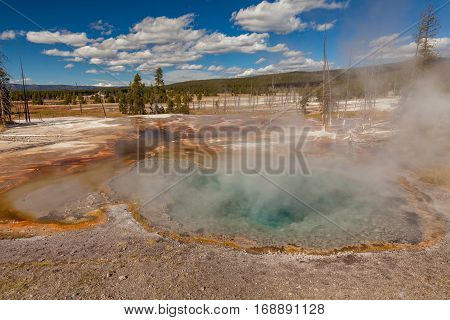 a colorful geothermal hot spring in Yellowstone National Park Wyoming
