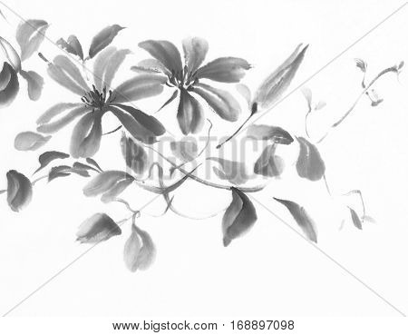 Clematis ink painting. Flower chinese traditional painting.
