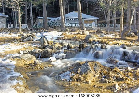 Waterflow in the woodsrocks and leaf fall during snow fall in naran valley kpk Pakistan