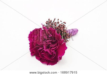 Close-up groom's boutonniere with carnation and skimmia on white background