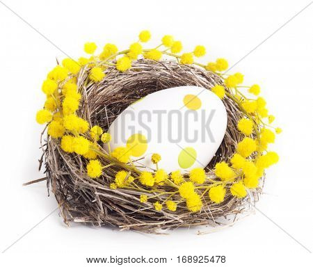 Easter egg in a nest with a branch of mimosa isolated on white background