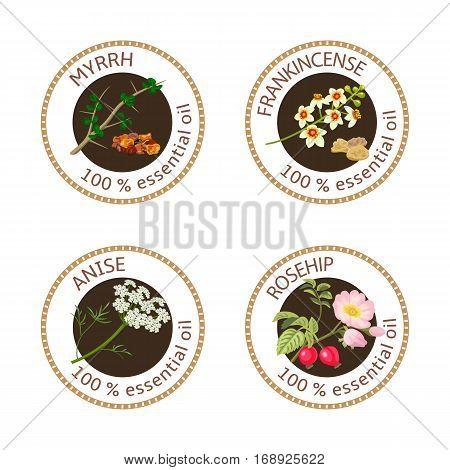 Set Of Essential Oils Labels. Myrrh, Anise, Rosehip, Frankincense