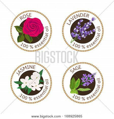 Set Of Essential Oils Labels. Rose, Sage, Lavender, Jasmine
