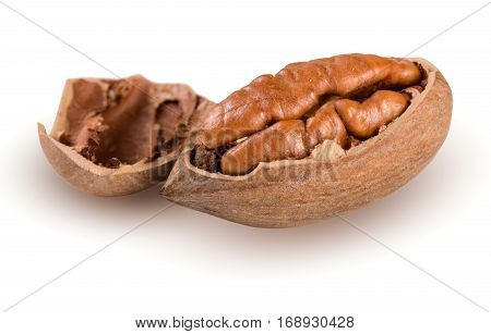 one pecan nuts isolated on white background.