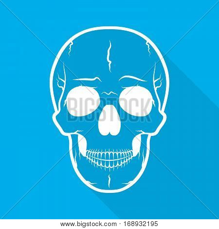 White human skull icon. Skull with long shadow on blue background. Vector illustration