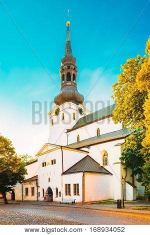 The Cathedral of Saint Mary the Virgin or Dome Church or Toomkirik in Tallinn, Estonia. Cathedral church located on Toompea Hill. Tallinna Neitsi Maarja Piiskoplik Toomkirik