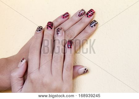 Manicure - Beauty treatment photo of nice manicured woman fingernails. Very interesting nail art with animal print nail polish. Soft focus