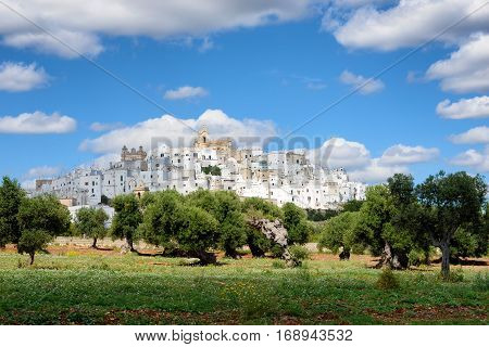 Landscape in Puglia Italy with the white city (citta bianca) Ostuni on a hill above an olive tree orchard under a cloudy sky.