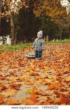 toddler boy in fall with a basket