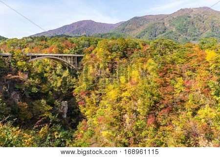 Autumn Colors of Naruko Gorge in Japan
