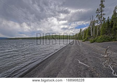 Wild Shore on a Shoshone Lake in Yellowstone National Park