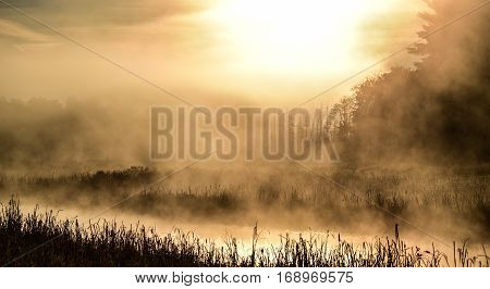 Bright high contrast summer sunrise on narrow passage of a lake.   Warm water & cooler air at daybreak.  Back lit bright misty fog rises from quiet water on marshy lakeside.