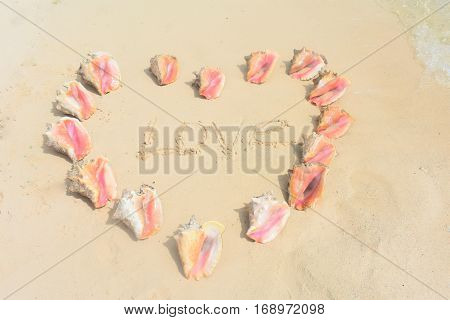 love heart in conch shells on the beach