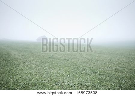Lonely wooden cabin in misty field of green frozen grass in cold autumn morning