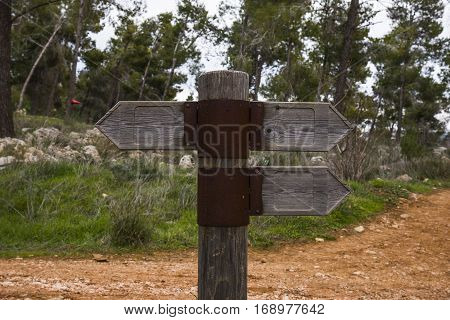Wooden direction sign with two arrows in opposite directions on white background wooden arrow on the road in different