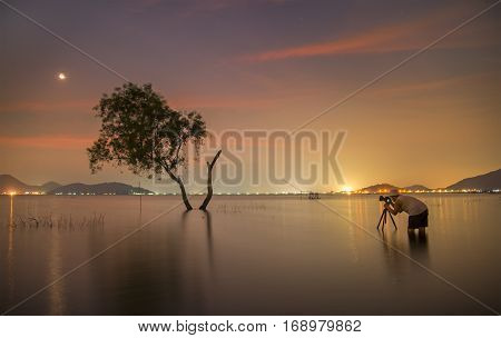 Photographer take a photo alone alive tree is in the flood of lake at sunset scenery
