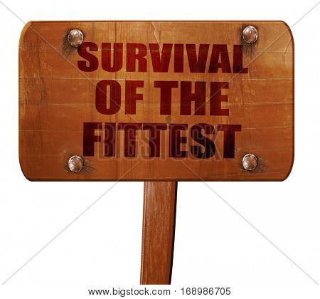 survival of the fittest, 3D rendering, text on wooden sign
