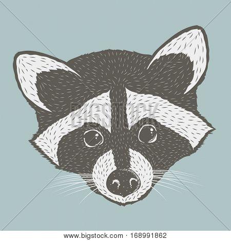 Raccoon head isolated vector illustration. Adorable mammal raccoon vector character