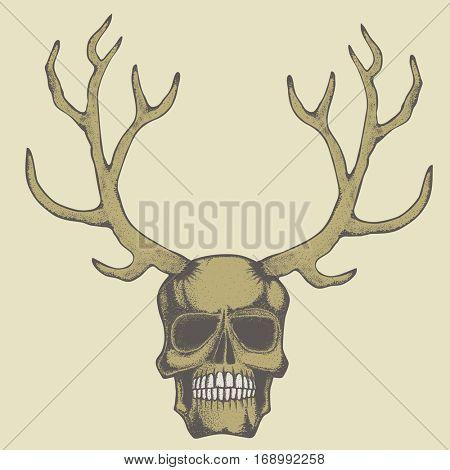 Vector skull with deer horn illustration concept. Hand drawn human skul