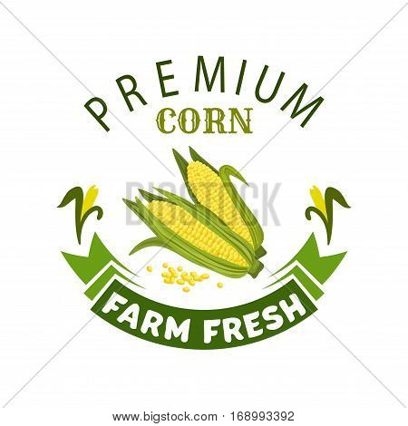 Corn vegetable icon. Vector isolated emblem of farm fresh corncob or corn ear with leaves. Vegetarian and vegan cuisine vegetable and agriculture ripe harvest. Sweet corn cob maize for grocery store, farmer market design