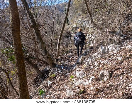 The Woman With Blond Hairs Walking Uphill On A Mountain With Scandinavian Walking Sticks. A Walk In