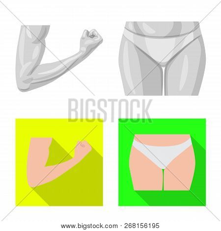 Isolated Object Of Human And Part Icon. Set Of Human And Woman Stock Vector Illustration.