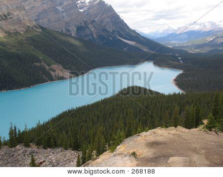 Peyto Lake, Right Side - Banff National Park, Alberta, Canada