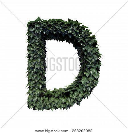 Fresh Green Foliage Letter D, 3d Rendering