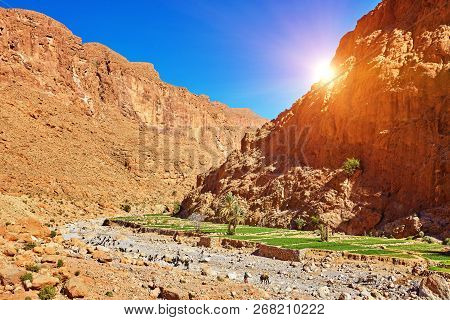 Todgha Gorge, A Canyon In The High Atlas Mountains In Morocco, Near The Town Of Tinerhir.