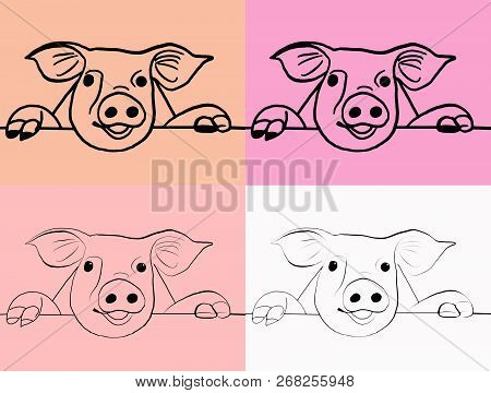 Brush Template. Set Of 4 Muzzle Pigs. Sketch. Symbol Of The Year 2019.